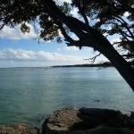 Automne 2016 : Cap sur l' île de Noirmoutier.