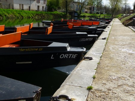 Mars 2017 : petite virée jusqu'au Marais Poitevin